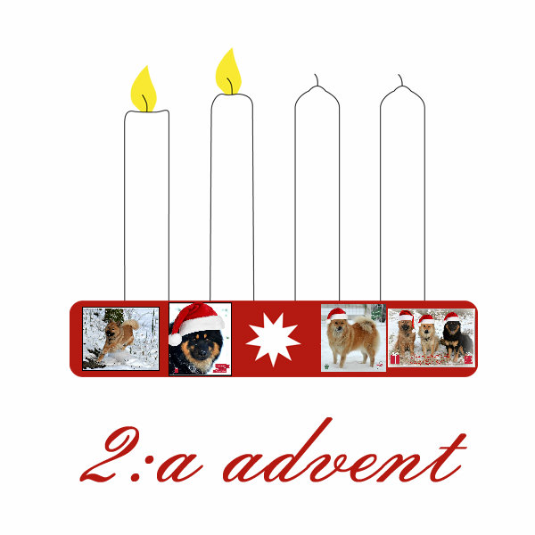 andra-advent1